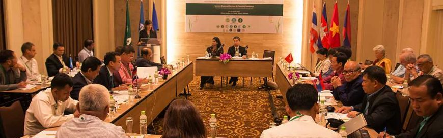 System of Rice Intensification (SRI) findings shared at Hanoi Workshop